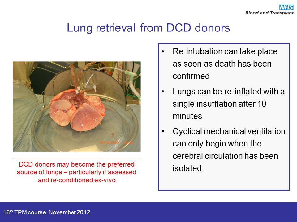 18 th TPM course, November 2012 Lung retrieval from DCD donors Re-intubation can take place as soon as death has been confirmed Lungs can be re-inflated with a single insufflation after 10 minutes Cyclical mechanical ventilation can only begin when the cerebral circulation has been isolated.