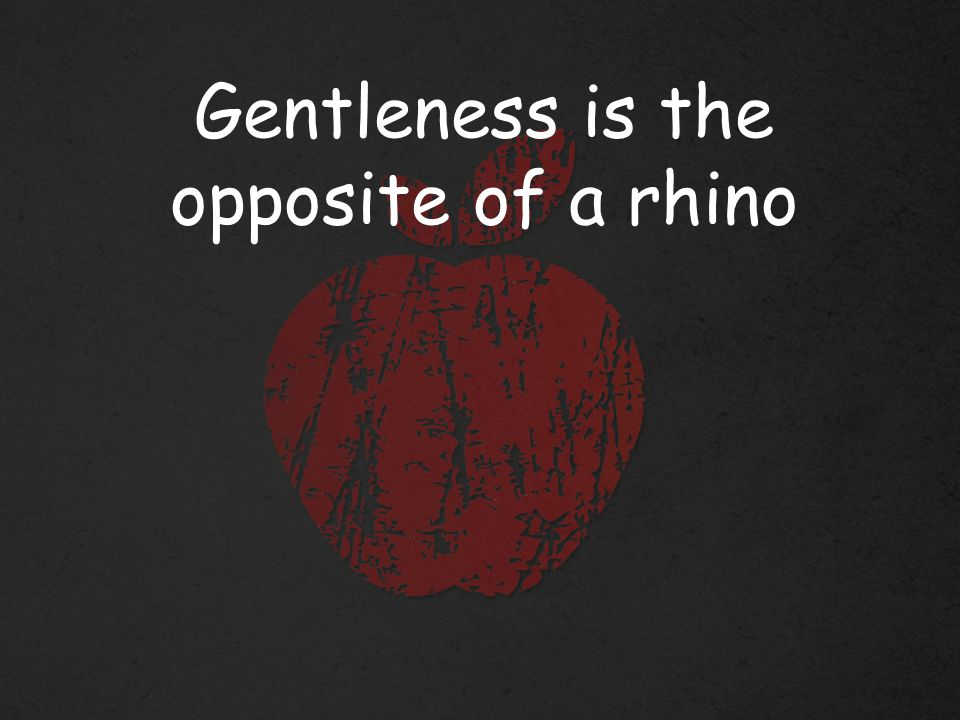 Gentleness is the opposite of a rhino