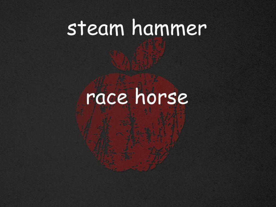 steam hammer race horse