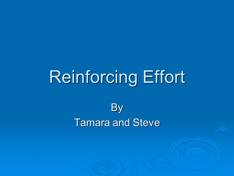 Reinforcing Effort By Tamara and Steve