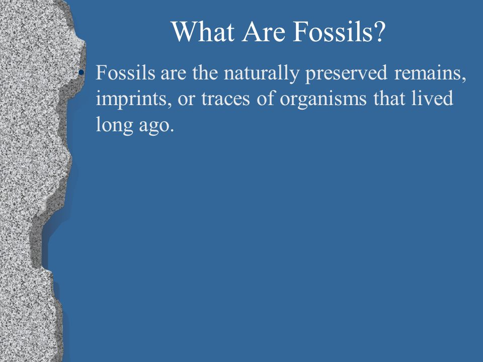What Are Fossils.Includes bones, shells, and footprints.