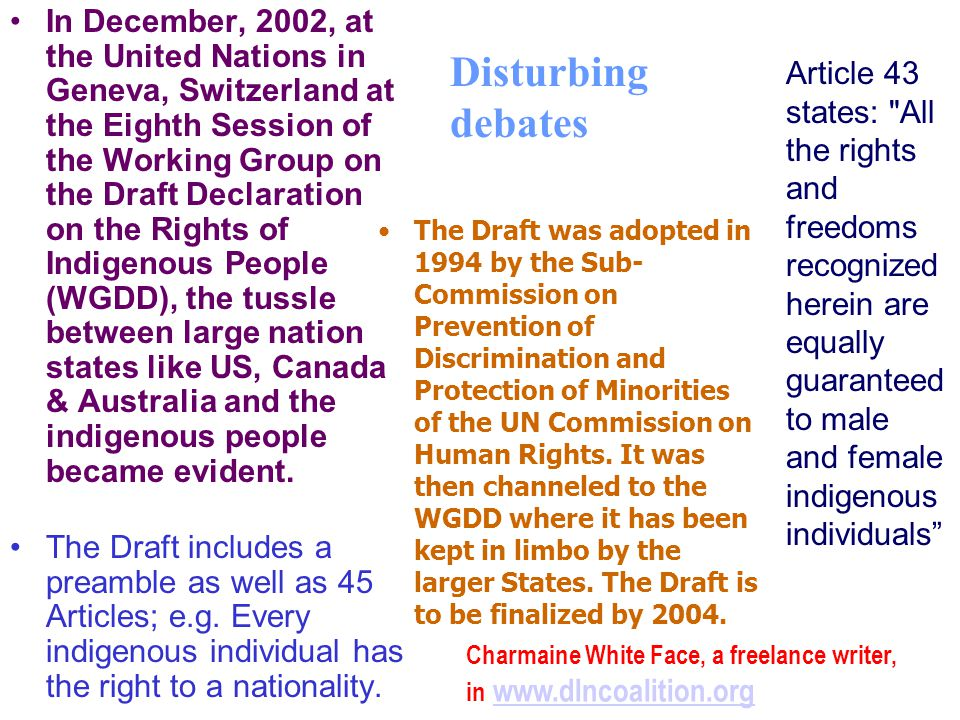 In December, 2002, at the United Nations in Geneva, Switzerland at the Eighth Session of the Working Group on the Draft Declaration on the Rights of Indigenous People (WGDD), the tussle between large nation states like US, Canada & Australia and the indigenous people became evident.