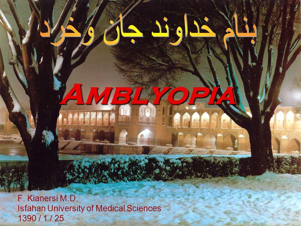 Amblyopia F. Kianersi M.D. Isfahan University of Medical Sciences 1390 / 1 / 25