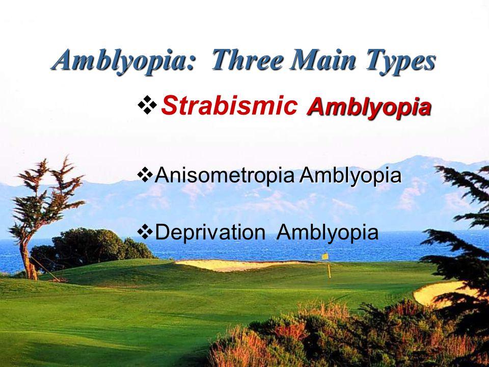 Amblyopia: Three Main Types Amblyopia  Strabismic Amblyopia Amblyopia  Anisometropia Amblyopia  Deprivation Amblyopia