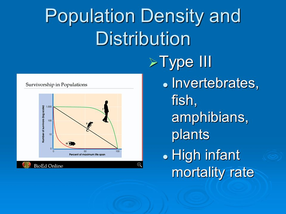 Population Density and Distribution  Type III Invertebrates, fish, amphibians, plants High infant mortality rate