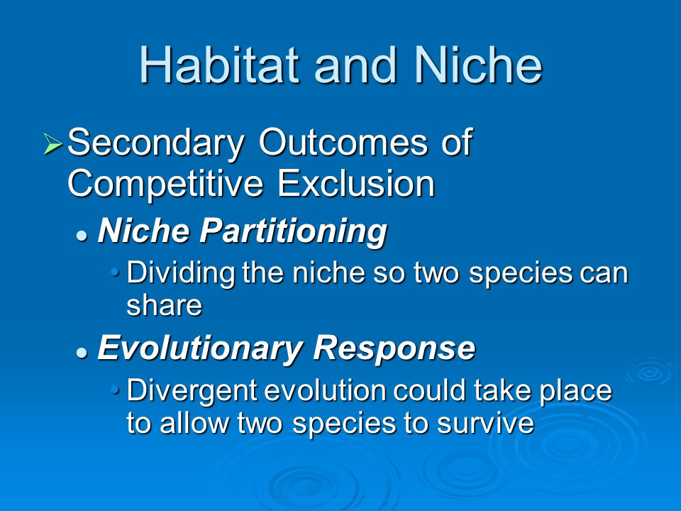 Habitat and Niche  Ecological Equivalants Similar species with similar niches in different geographical regions Sign of convergent evolution Emerald Tree Boa – South America Green Tree Python - Australia