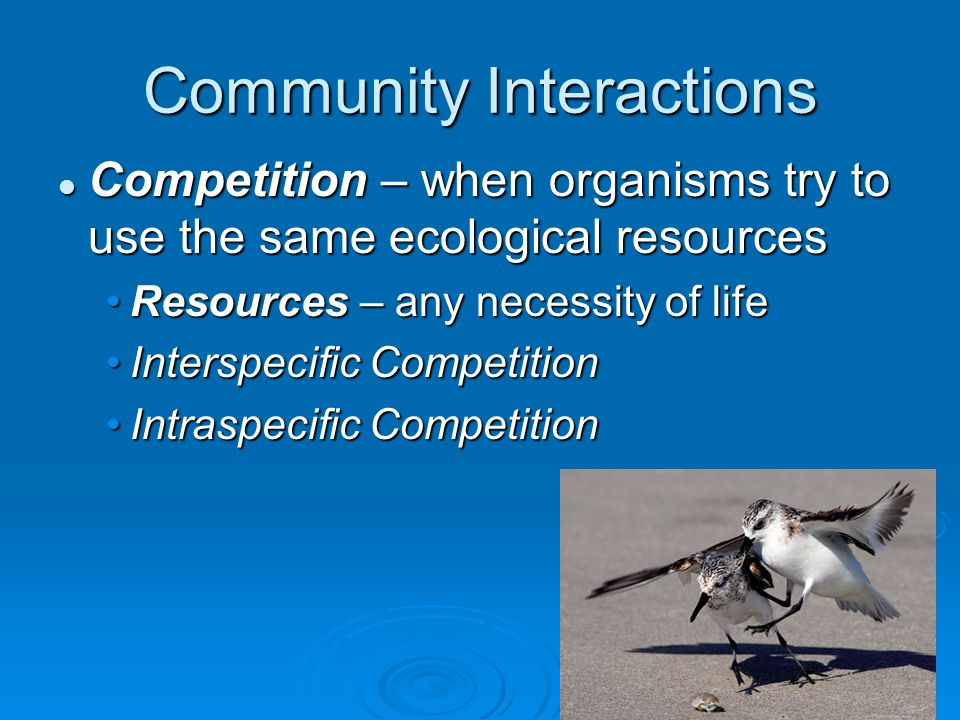 Community Interactions Competition – when organisms try to use the same ecological resources Resources – any necessity of life Interspecific Competiti