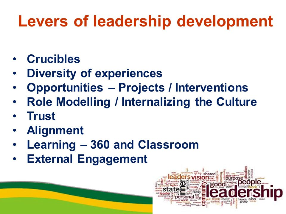 Levers of leadership development Crucibles Diversity of experiences Opportunities – Projects / Interventions Role Modelling / Internalizing the Culture Trust Alignment Learning – 360 and Classroom External Engagement