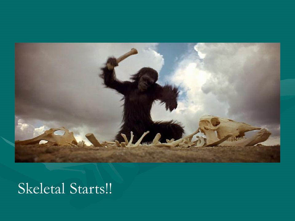 Skeletal Starts!!