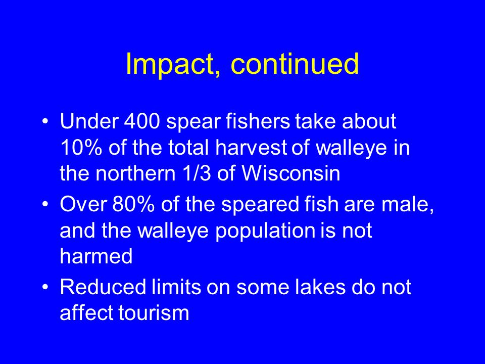Impact, continued Under 400 spear fishers take about 10% of the total harvest of walleye in the northern 1/3 of Wisconsin Over 80% of the speared fish are male, and the walleye population is not harmed Reduced limits on some lakes do not affect tourism
