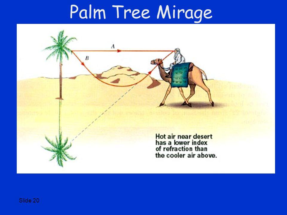 Slide 20 Palm Tree Mirage