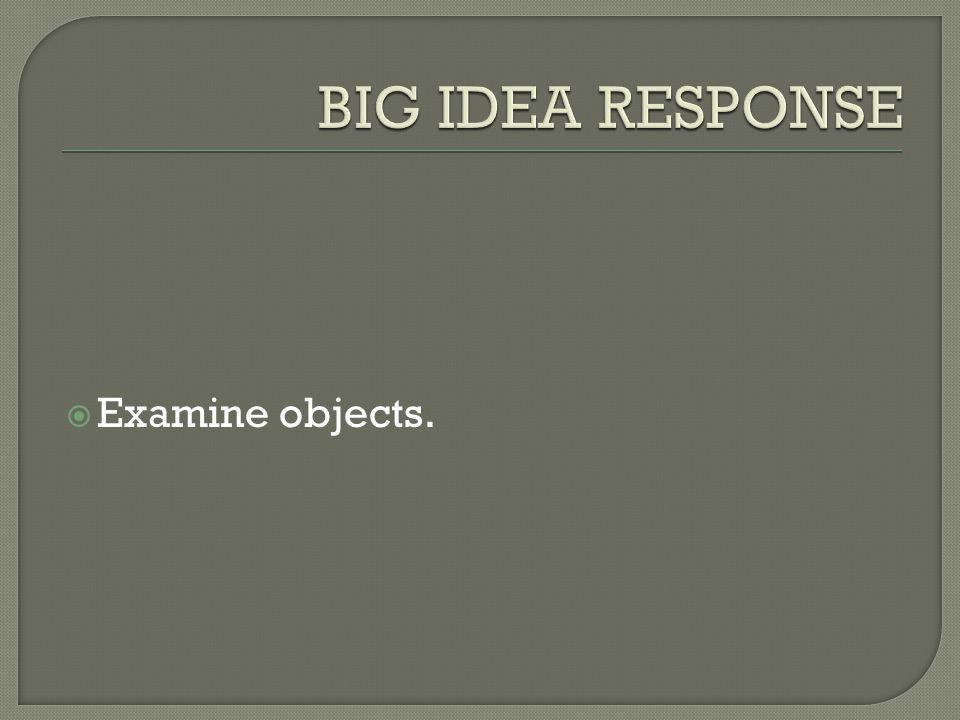  Examine objects.