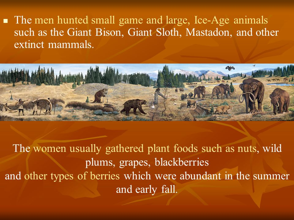 The men hunted small game and large, Ice-Age animals such as the Giant Bison, Giant Sloth, Mastadon, and other extinct mammals.