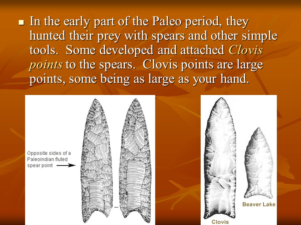 In the early part of the Paleo period, they hunted their prey with spears and other simple tools.