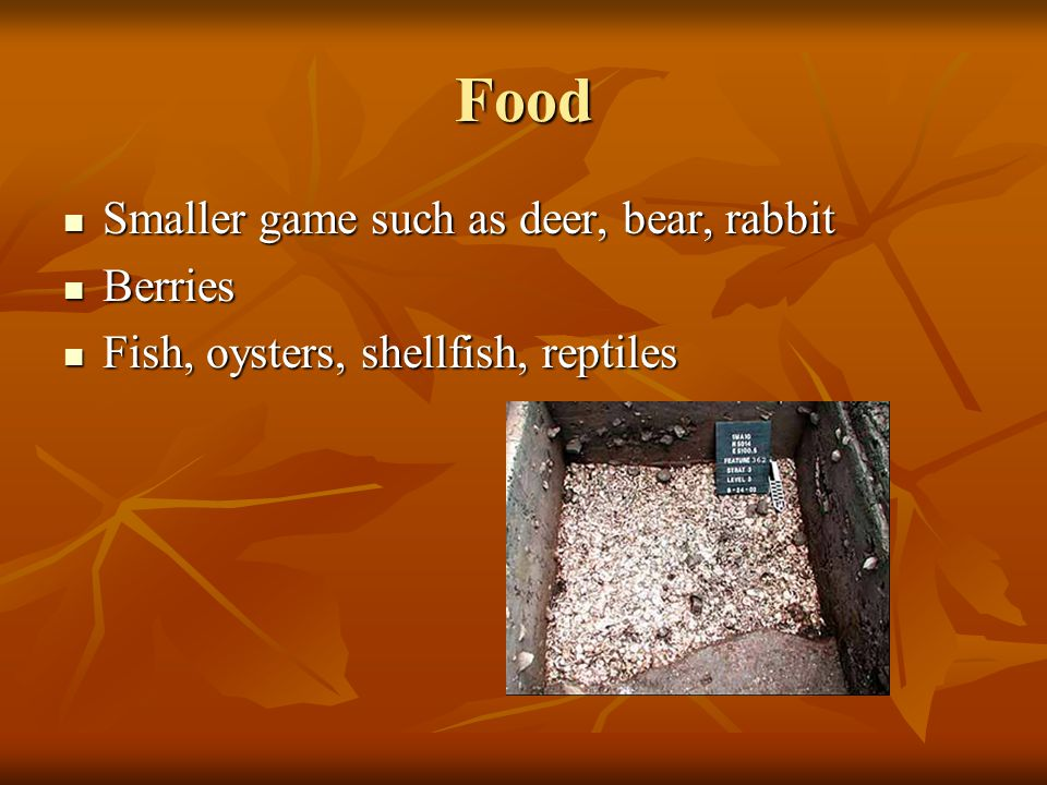 Food Smaller game such as deer, bear, rabbit Smaller game such as deer, bear, rabbit Berries Berries Fish, oysters, shellfish, reptiles Fish, oysters, shellfish, reptiles