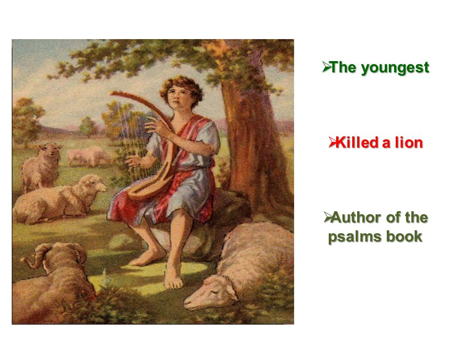  The youngest  Killed a lion  Author of the psalms book
