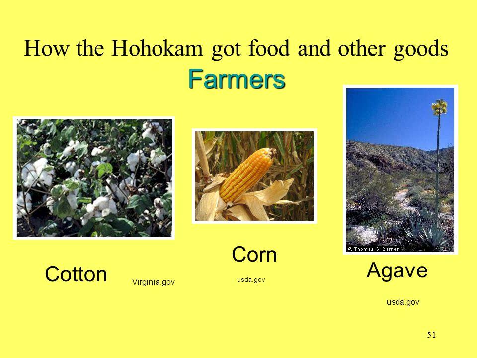 Farmers How the Hohokam got food and other goods Farmers Virginia.gov usda.gov Cotton Corn Agave usda.gov 51