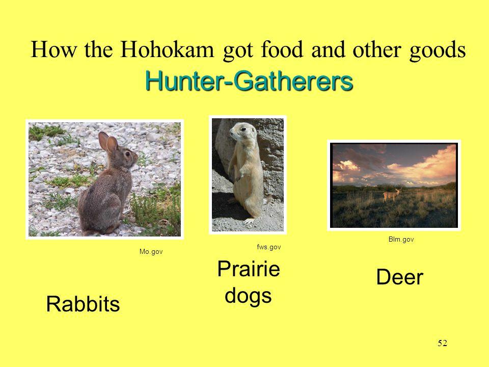 Hunter-Gatherers How the Hohokam got food and other goods Hunter-Gatherers Rabbits Prairie dogs Deer Mo.gov fws.gov Blm.gov 52