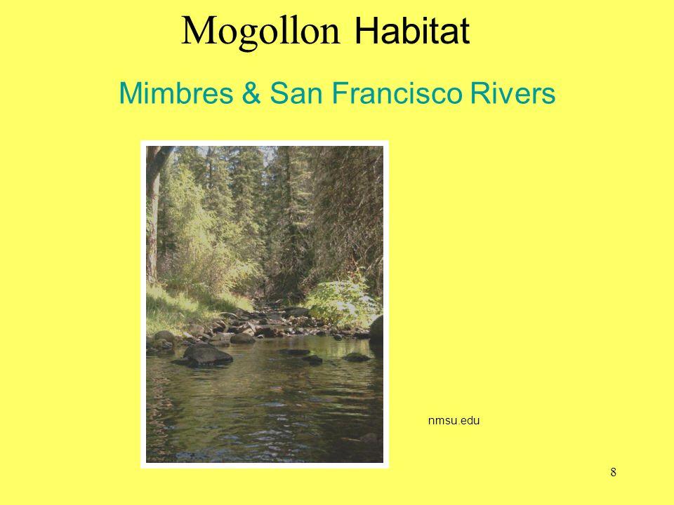 Mimbres & San Francisco Rivers Mogollon Habitat nmsu.edu 8
