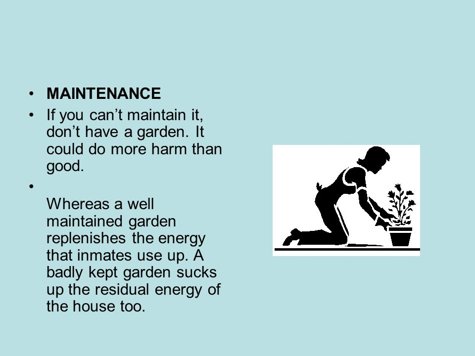 MAINTENANCE If you can't maintain it, don't have a garden.