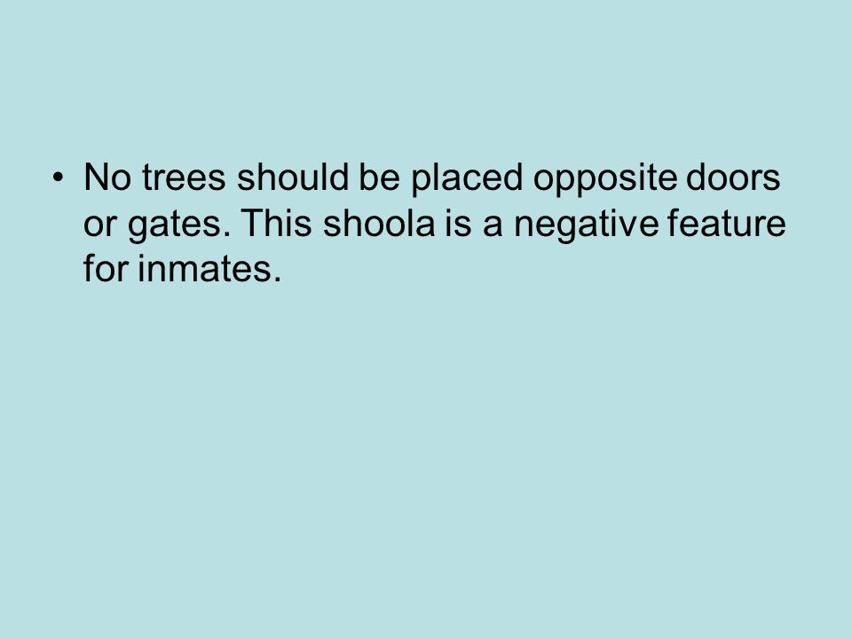 No trees should be placed opposite doors or gates. This shoola is a negative feature for inmates.