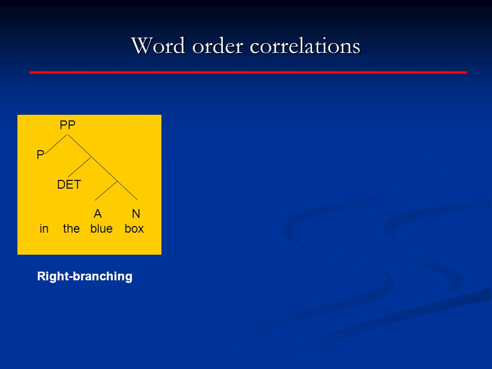 Word order correlations PP P DET A N in the blue box Right-branching