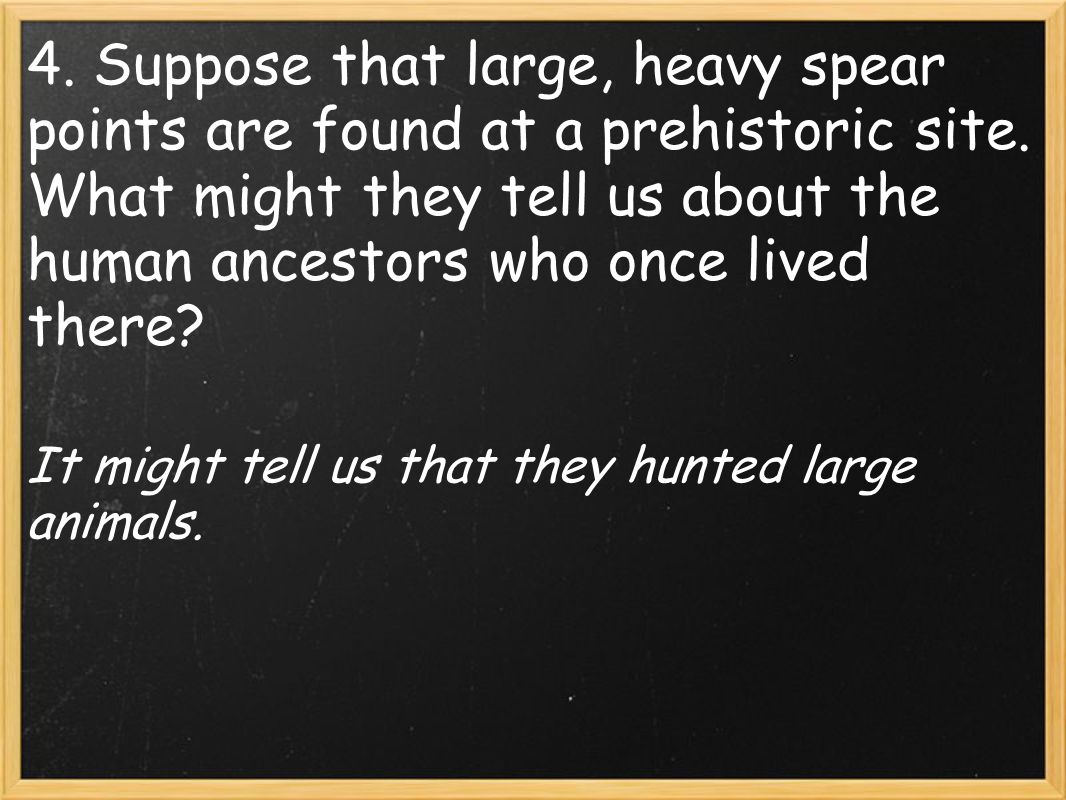 It might tell us that they hunted large animals.