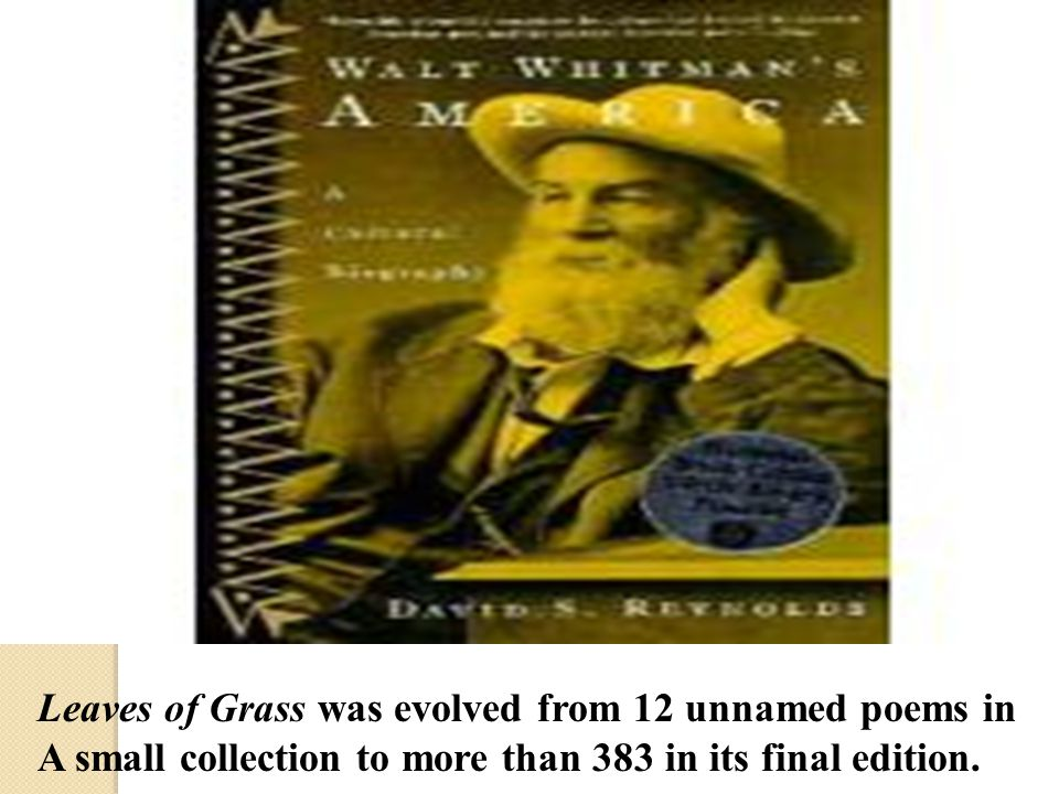 Leaves of Grass was evolved from 12 unnamed poems in A small collection to more than 383 in its final edition.