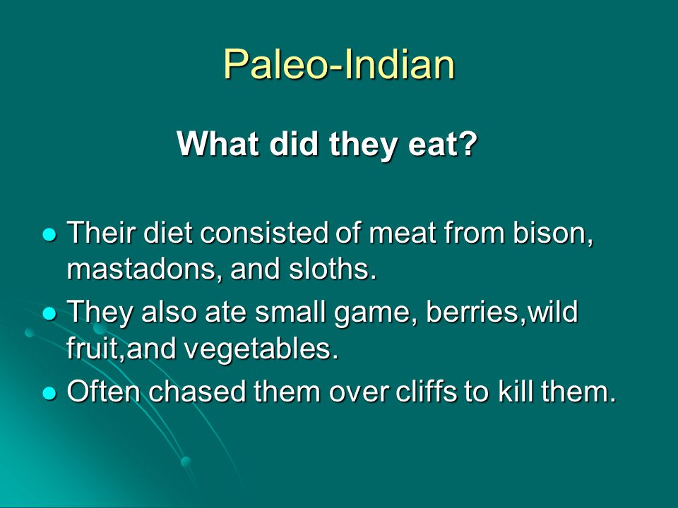 Paleo-Indian What did they eat? Their diet consisted of meat from bison, mastadons, and sloths. Their diet consisted of meat from bison, mastadons, an