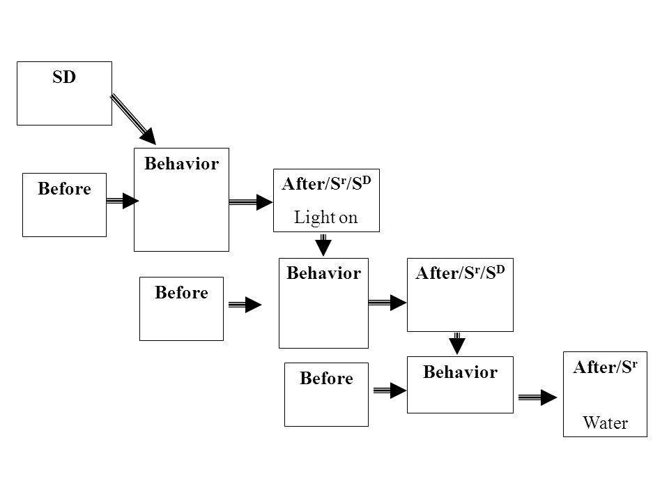 S r /S D Light on Behavior Pull chain Behavior Press lever S r /S D Dipper click Behavior Approaches dipper S r Water