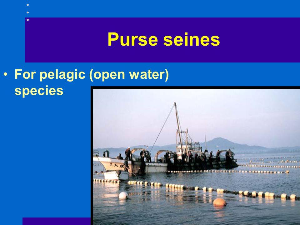 Purse seines For pelagic (open water) species