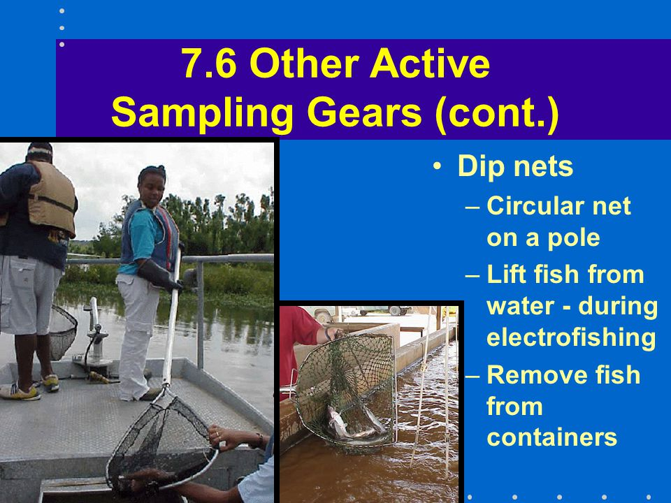 7.6 Other Active Sampling Gears (cont.) Dip nets –Circular net on a pole –Lift fish from water - during electrofishing –Remove fish from containers