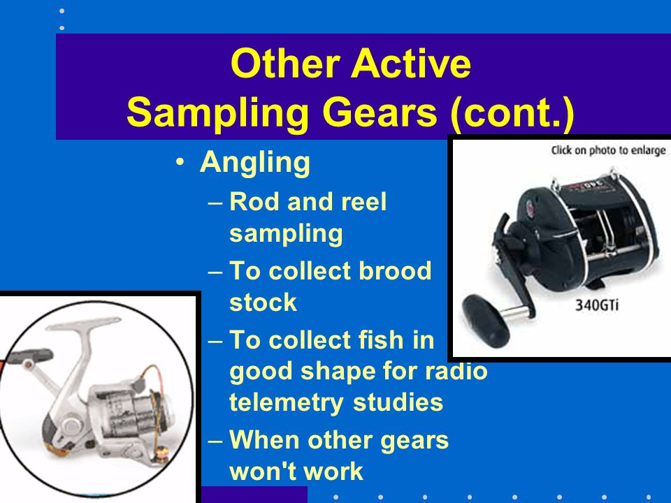 Other Active Sampling Gears (cont.) Angling –Rod and reel sampling –To collect brood stock –To collect fish in good shape for radio telemetry studies