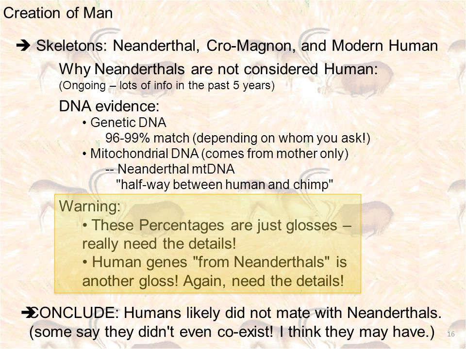 Creation of Man 16  Skeletons: Neanderthal, Cro-Magnon, and Modern Human Why Neanderthals are not considered Human: (Ongoing – lots of info in the past 5 years) DNA evidence: Genetic DNA 96-99% match (depending on whom you ask!) Mitochondrial DNA (comes from mother only) -- Neanderthal mtDNA half-way between human and chimp Warning: These Percentages are just glosses – really need the details.