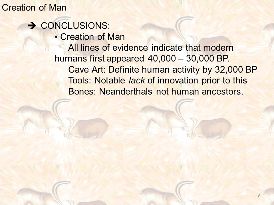 Creation of Man 18  CONCLUSIONS: Creation of Man All lines of evidence indicate that modern humans first appeared 40,000 – 30,000 BP.