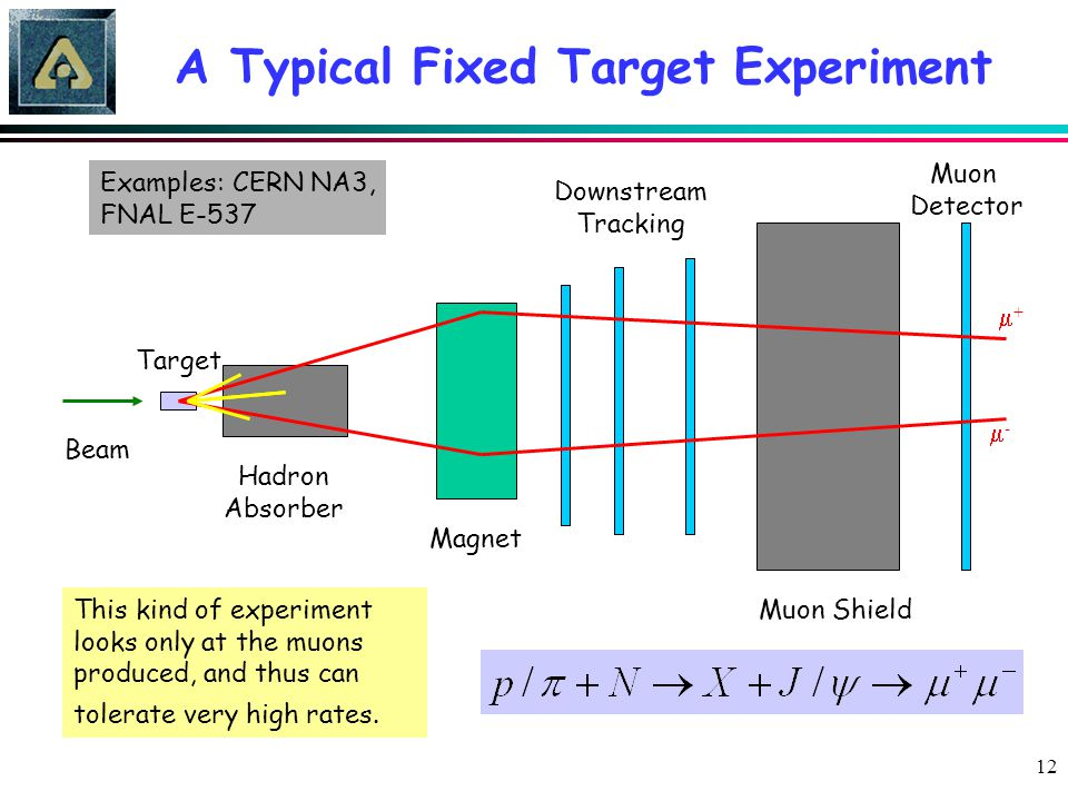 12 A Typical Fixed Target Experiment Magnet Muon Shield Downstream Tracking Beam Target Hadron Absorber ++ -- Muon Detector This kind of experimen