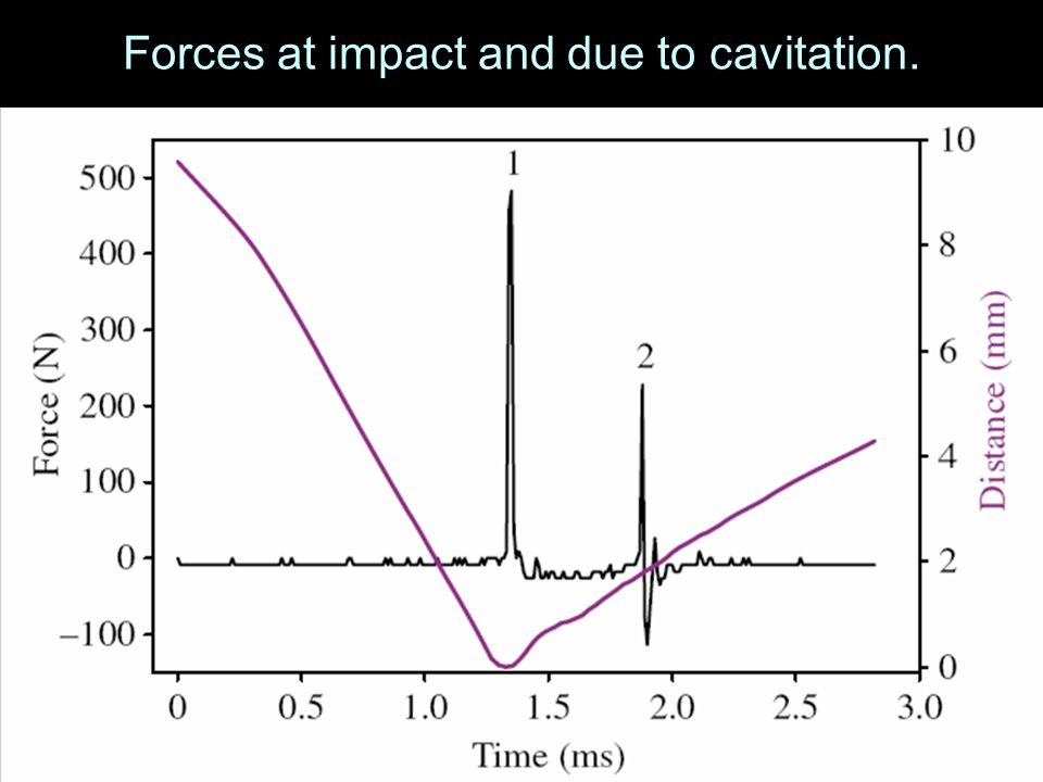 Forces at impact and due to cavitation.