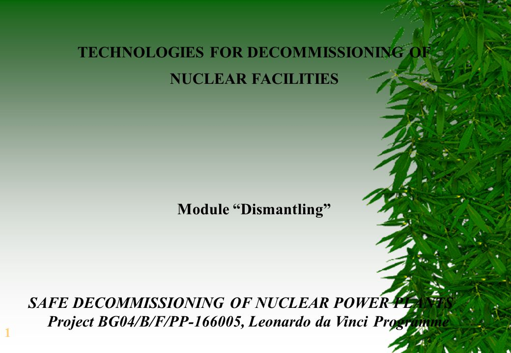 1 TECHNOLOGIES FOR DECOMMISSIONING OF NUCLEAR FACILITIES SAFE DECOMMISSIONING OF NUCLEAR POWER PLANTS Project BG04/B/F/PP-166005, Leonardo da Vinci Programme Module Dismantling