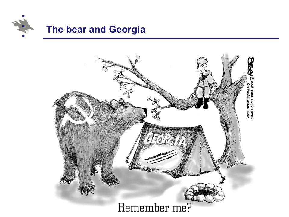 The bear and Georgia