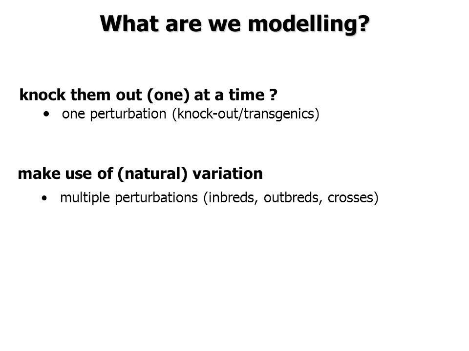 What are we modelling? make use of (natural) variation multiple perturbations (inbreds, outbreds, crosses) knock them out (one) at a time ? one pertur