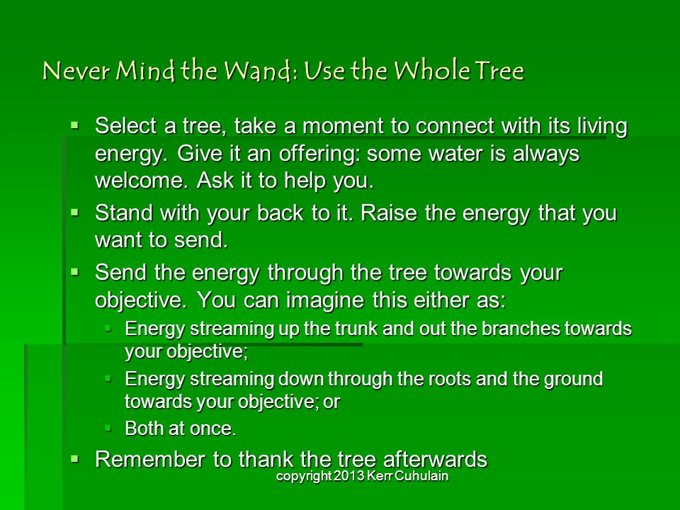 Never Mind the Wand: Use the Whole Tree  Select a tree, take a moment to connect with its living energy.