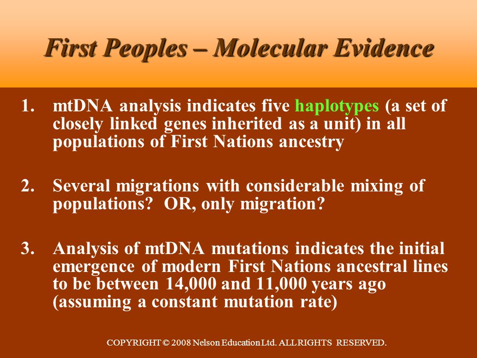 COPYRIGHT © 2008 Nelson Education Ltd. ALL RIGHTS RESERVED. First Peoples – Molecular Evidence 1.mtDNA analysis indicates five haplotypes (a set of cl