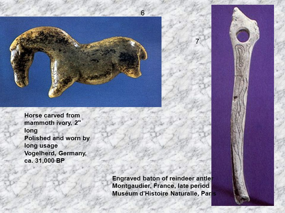 Leaping Horse Carved on spear-thrower of reindeer antler Bruniquel, France, late period Musée de Antiquités Nationales, St.