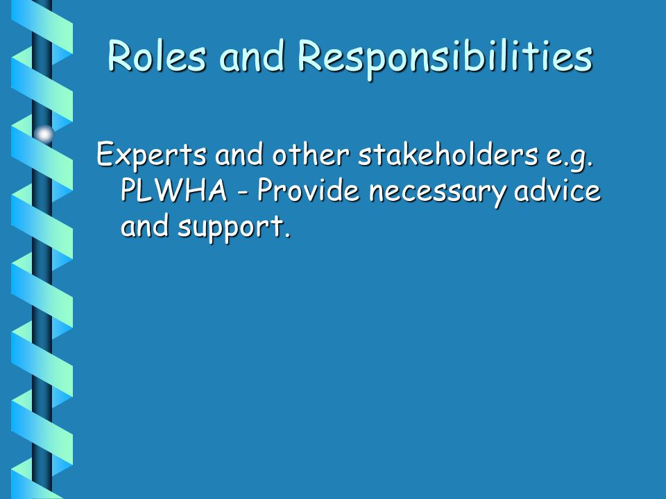Roles and Responsibilities Experts and other stakeholders e.g. PLWHA - Provide necessary advice and support.