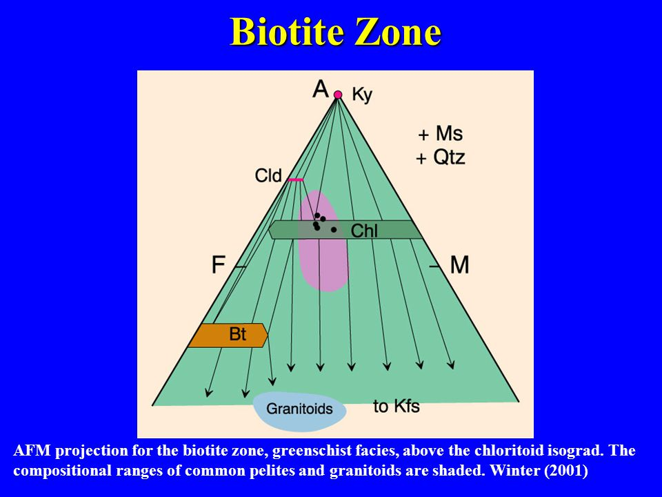 AFM projection for the biotite zone, greenschist facies, above the chloritoid isograd.