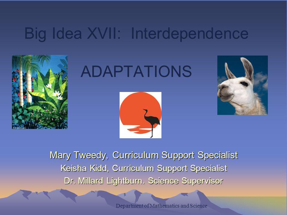 Big Idea XVII: Interdependence ADAPTATIONS Mary Tweedy, Curriculum Support Specialist Keisha Kidd, Curriculum Support Specialist Dr.