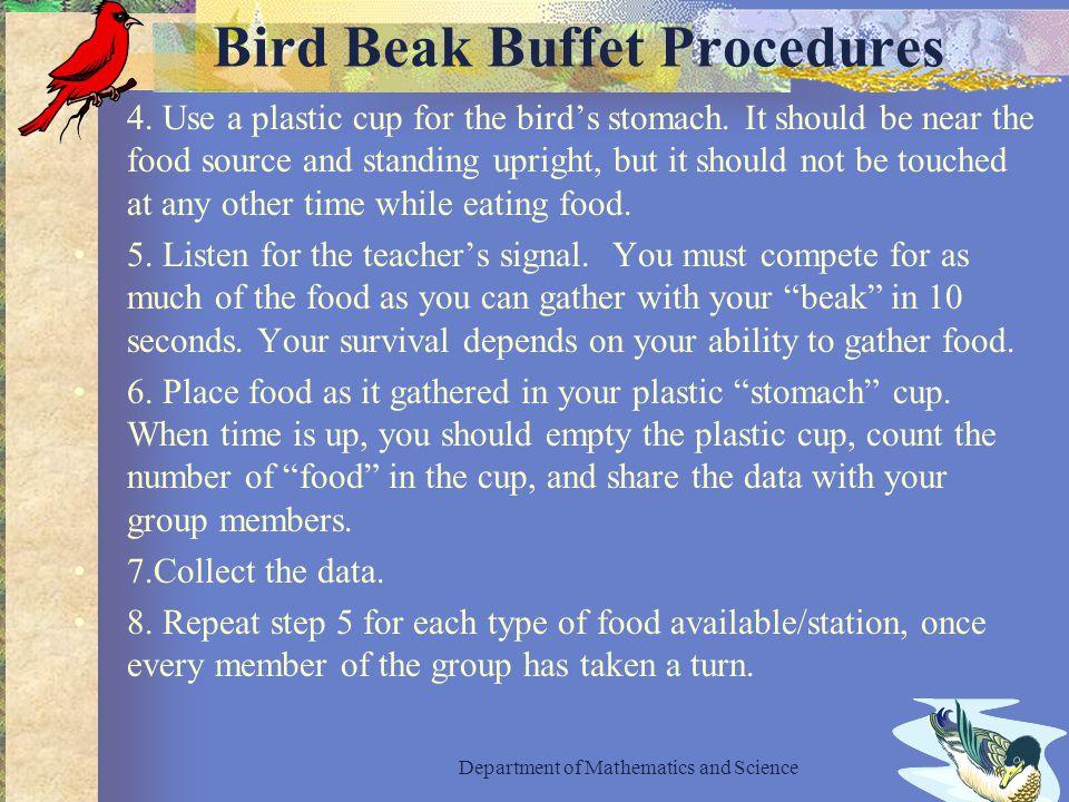 Bird Beak Buffet Procedures 4. Use a plastic cup for the bird's stomach.