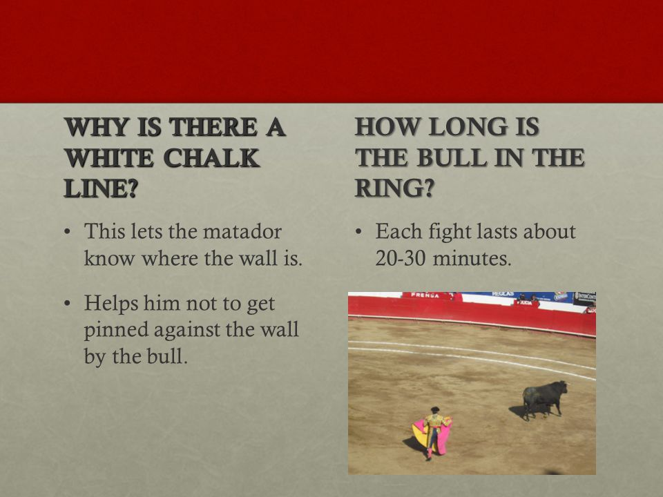 WHY IS THERE A WHITE CHALK LINE. This lets the matador know where the wall is.