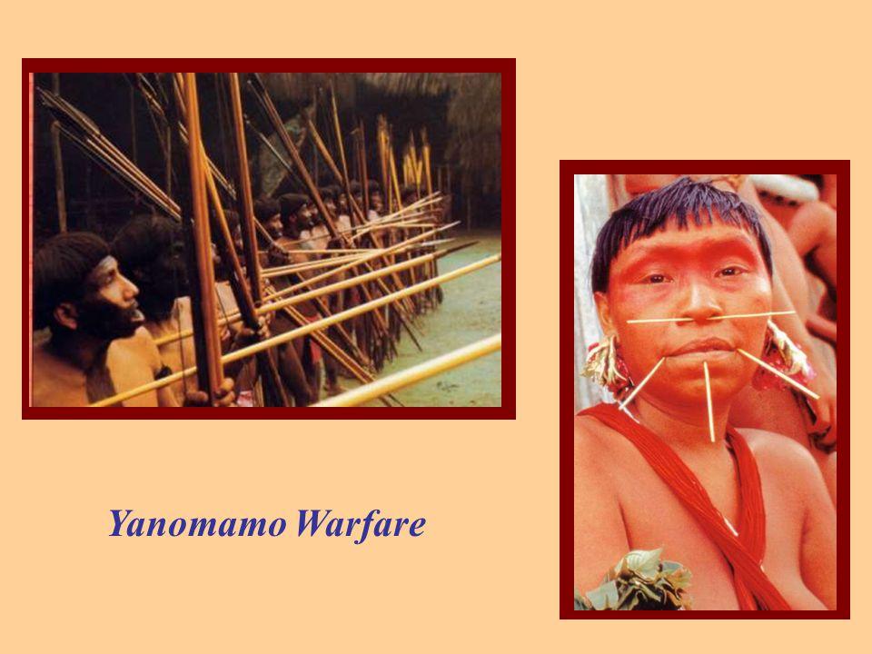 Yanomamo Warfare