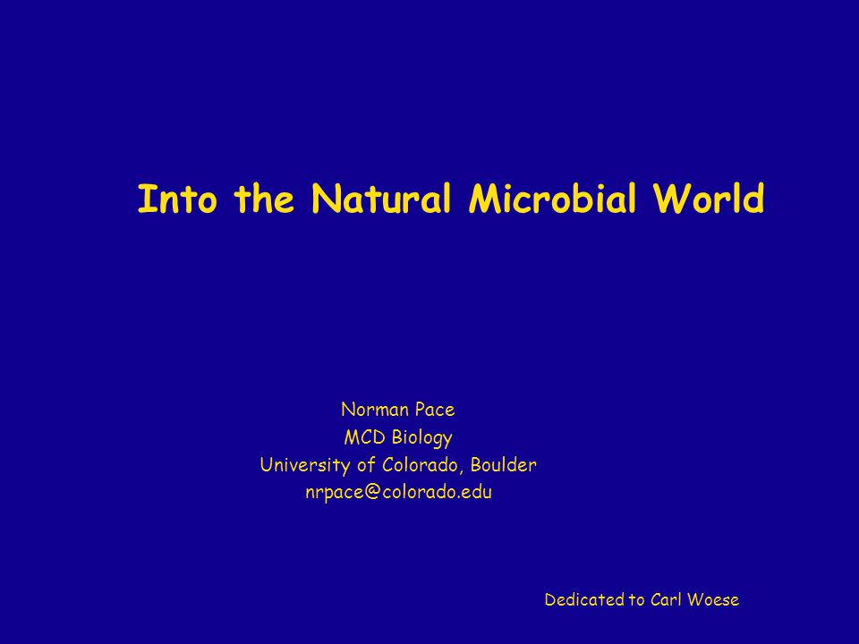 Into the Natural Microbial World Norman Pace MCD Biology University of Colorado, Boulder nrpace@colorado.edu Dedicated to Carl Woese